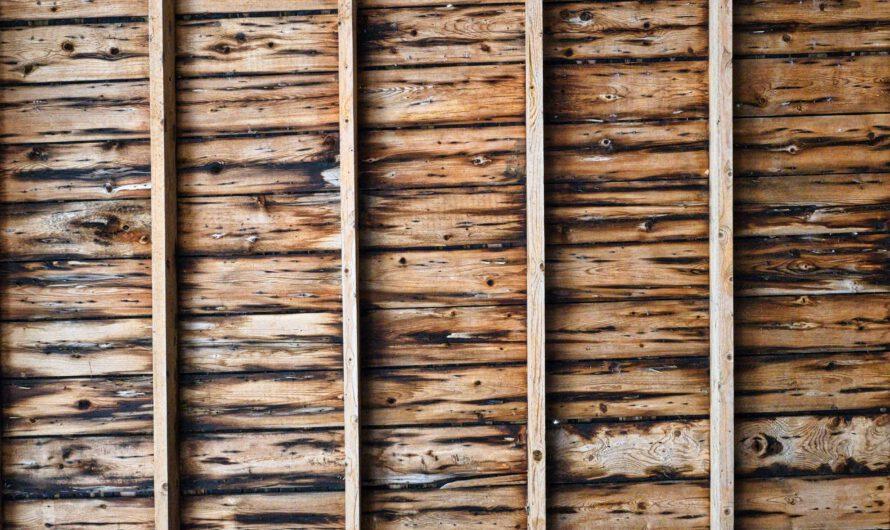 Co to jest drewno konstrukcyjne?