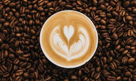 Które gatunki kaw pasują do ekspresu?